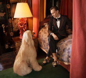 gallery-1474901009-gu501-mens-tailoring-pr-cropped-300dpi-3